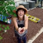 Bridget juneberries