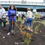 Penn Park spring planting