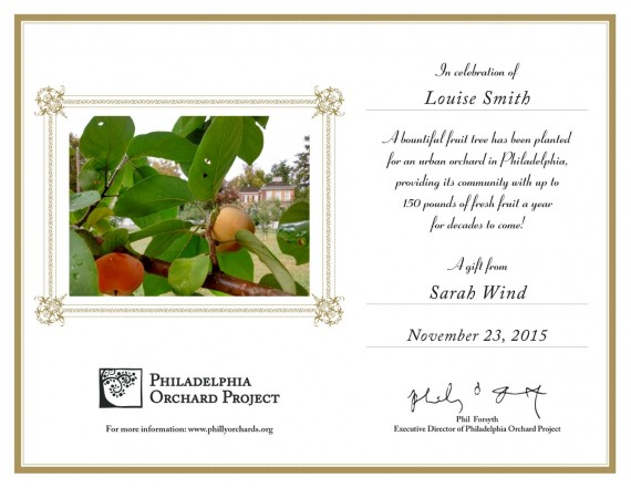 An example of a POP Tree Certificate, which has gold borders, a photo of ripening persimmons, and text.