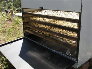 solar drying