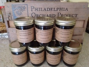 Juneberry Jelly produced by West Philly-based Spruce Hill Preserves with fruit harvested at UPenn, Francisville, and Fair Hill juneberry POPHarvest events