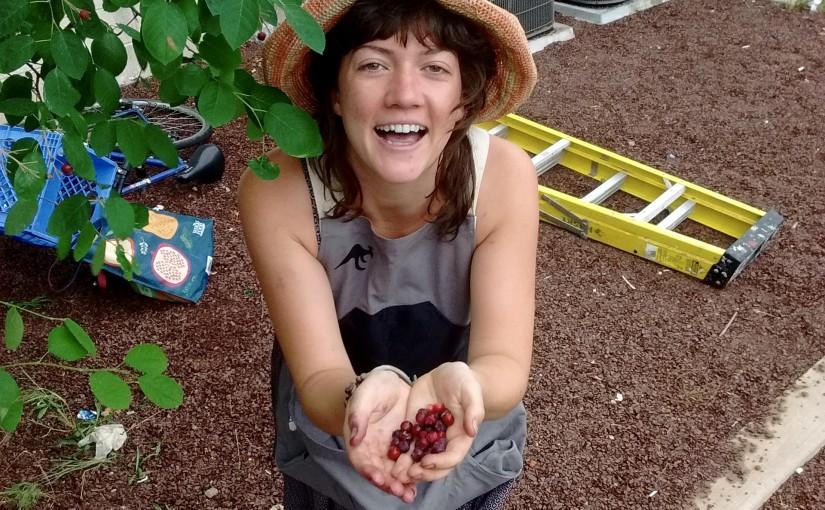 POP Intern Experience: Bridget Downey