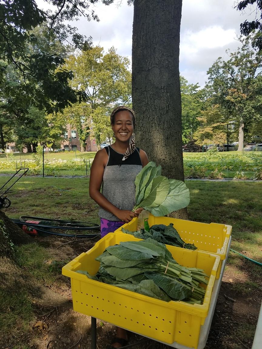 POP Lead Orchard Volunteer Taylor with collard harvest!