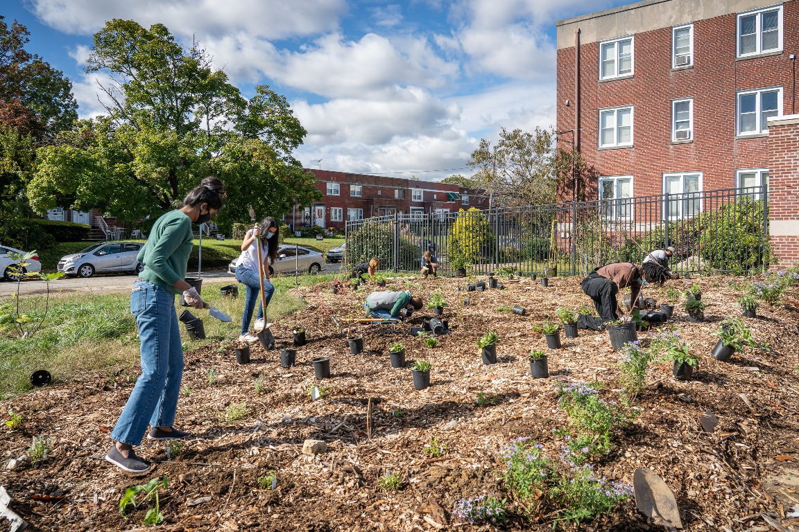 POP staff and volunteers from Depaul installed a new food forest, spring 2020. Many are kneeling down on a bed of mulch as they dig holes for the new plants.