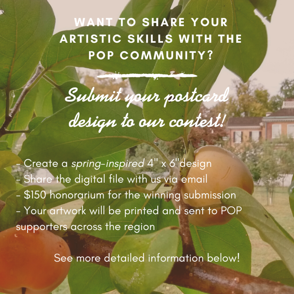 "Text over persimmon fruit on a tree reading: ""Want to share your artistic skills with the POP community? Submit your postcard design to our contest! Create a spring-inspired 4"" by 6"" design; share the digital file with us via email; $150 honorarium for the winning submission; your artwork will be printed and sent to POP supporters across the region. See more detailed info below!"""